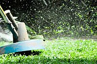 Garden Maintenance - Some Fast Facts
