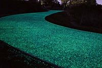 Glow-in-the-dark pathways to be installed in Brisbane