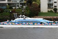 Council panned for 'senseless' decision to scrap colourful CityCat wraps